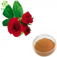 Quality Rose Flower Extract Powder wholesale